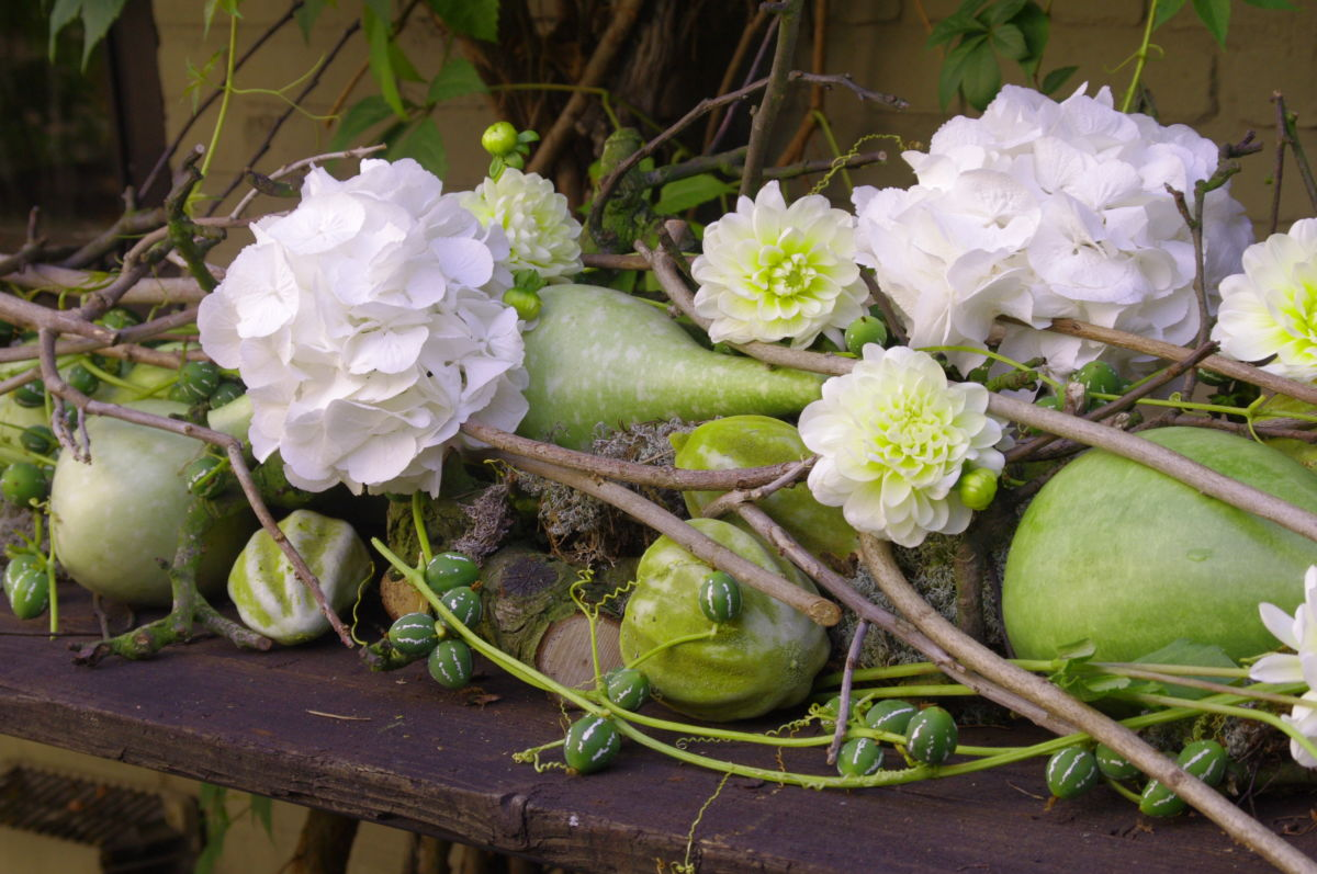 , Bloemen voor thuis BIJ WOLTER